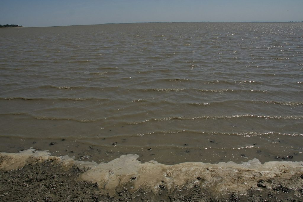 Обмелевшее Краснодарское водохранилище